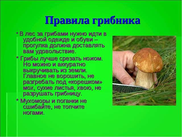 Правила грибника * В лес за грибами нужно идти в удобной одежде и обуви – про...
