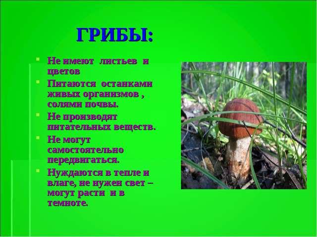 ГРИБЫ: Не имеют листьев и цветов Питаются останками живых организмов , солям...