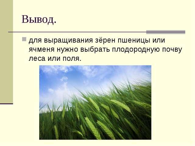 Вывод. для выращивания зёрен пшеницы или ячменя нужно выбрать плодородную поч...
