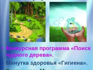 14 день «День защиты природы» Конкурсная программа «Поиск чудного дерева». Ми