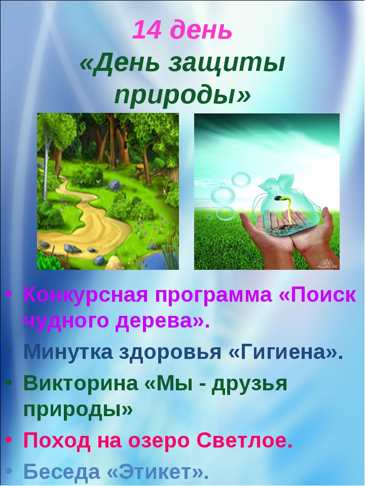 14 день «День защиты природы» Конкурсная программа «Поиск чудного дерева». Ми...