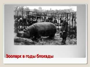 Зоопарк в годы блокады