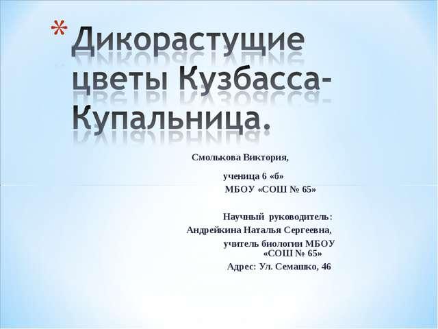 Смолькова Виктория, ученица 6 «б» МБОУ «СОШ № 65»  Научный руководи...