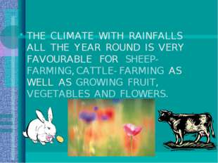 THE CLIMATE WITH RAINFALLS ALL THE YEAR ROUND IS VERY FAVOURABLE FOR SHEEP- F