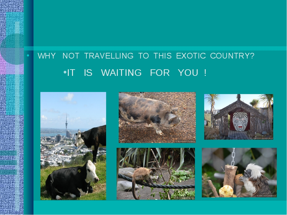 WHY NOT TRAVELLING TO THIS EXOTIC COUNTRY? IT IS WAITING FOR YOU !