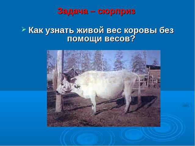 Задача – сюрприз Как узнать живой вес коровы без помощи весов?