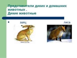 Представители диких и домашних животных . Дикие животные заяц лиса