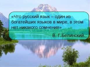 «Что русский язык – один из богатейших языков в мире, в этом нет никакого сом