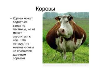 Коровы Корова может подняться вверх по лестнице, но не может спуститься с нее