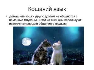Кошачий язык Домашние кошки друг с другом не общаются с помощью мяуканья. Это