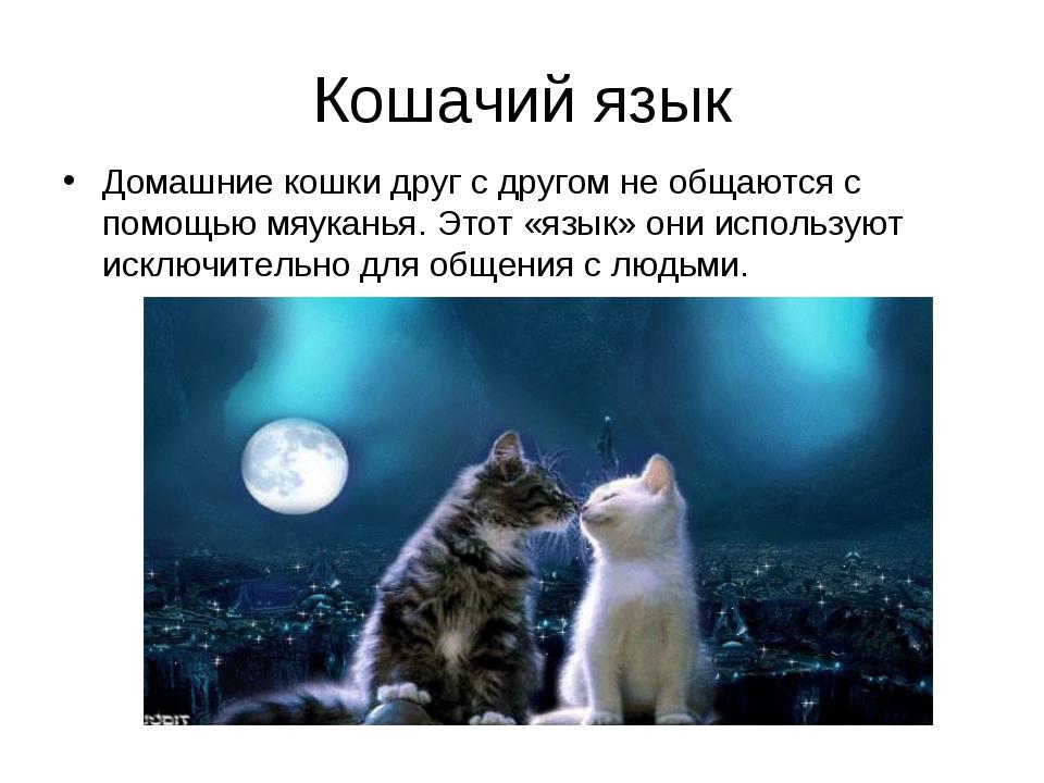 Кошачий язык Домашние кошки друг с другом не общаются с помощью мяуканья. Это...