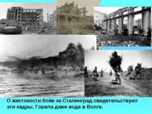 О жестокости боёв за Сталинград свидетельствуют эти кадры. Горела даже вода