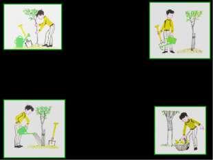 Задание: составьте предложения по картинкам с использованием причастных оборо