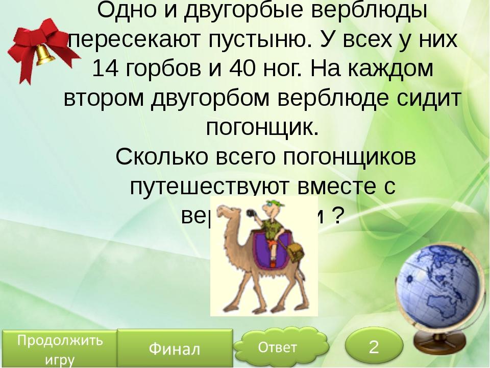 Одно и двугорбые верблюды пересекают пустыню. У всех у них 14 горбов и 40 ног...