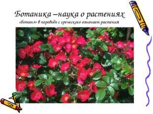 Ботаника –наука о растениях «ботанэ» в переводе с греческого означает растения