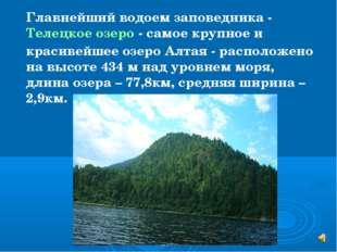 Главнейший водоем заповедника - Телецкое озеро - самое крупное и красивейшее