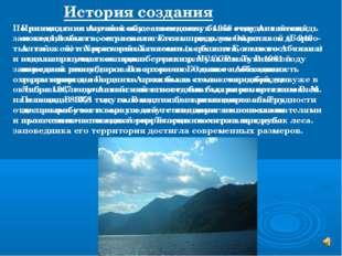 При создании Алтайскому заповеднику была отведена площадь около 1,3 млн га, о