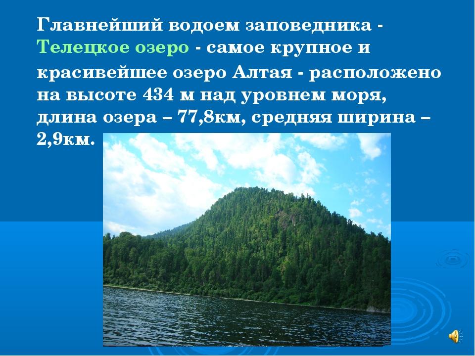 Главнейший водоем заповедника - Телецкое озеро - самое крупное и красивейшее...