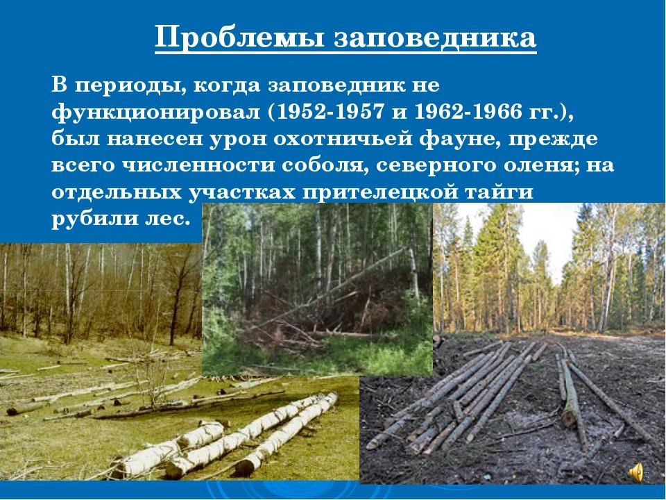 Проблемы заповедника В периоды, когда заповедник не функционировал (1952-1957...