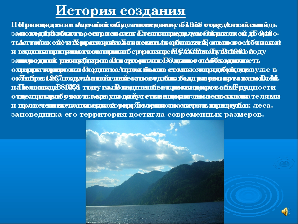 При создании Алтайскому заповеднику была отведена площадь около 1,3 млн га, о...