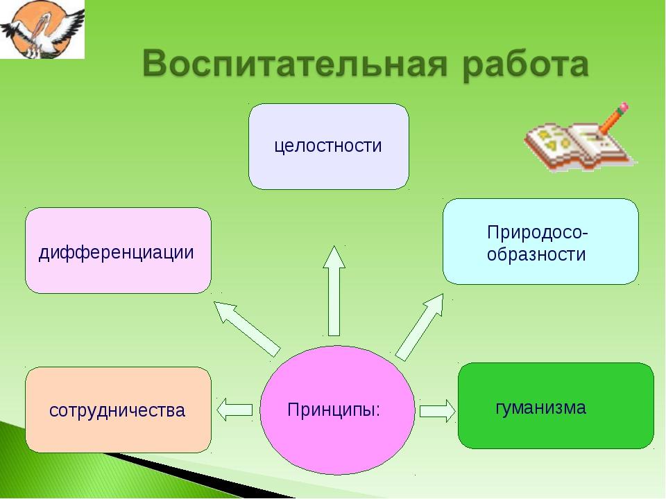целостности Природосо-образности дифференциации сотрудничества гуманизма Прин...