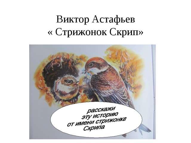Виктор Астафьев « Стрижонок Скрип»