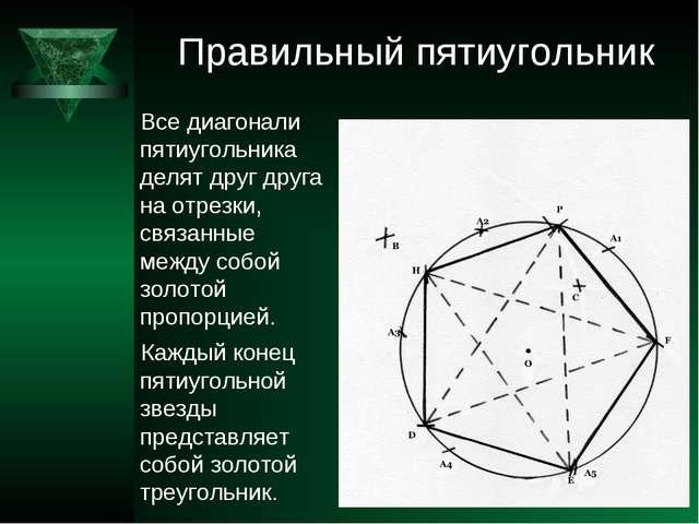 Правильный пятиугольник Все диагонали пятиугольника делят друг друга на отрез...