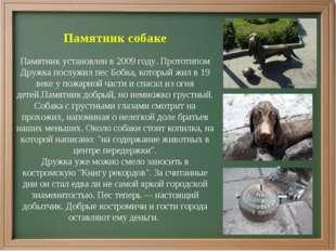 Памятник собаке Памятник установлен в 2009 году. Прототипом Дружка послужил