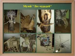 """Музей """"Лес-чудодей"""""""