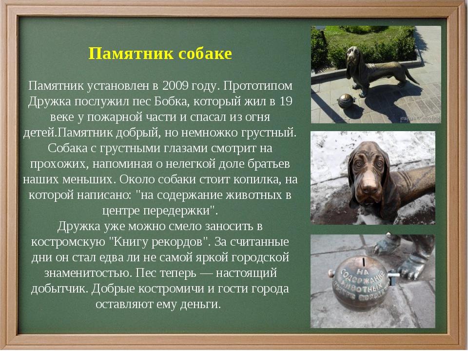 Памятник собаке Памятник установлен в 2009 году. Прототипом Дружка послужил...