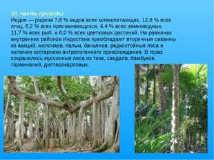 10. Часть природы Индия— родина 7,6% видов всех млекопитающих, 12,6% всех