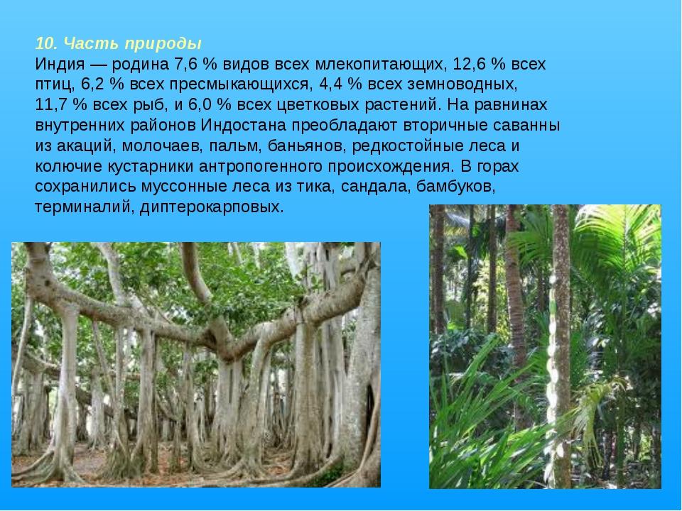 10. Часть природы Индия— родина 7,6% видов всех млекопитающих, 12,6% всех...
