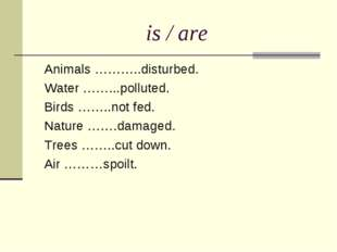 is / are Animals ………..disturbed. Water ……...polluted. Birds ……..not fed. Natu