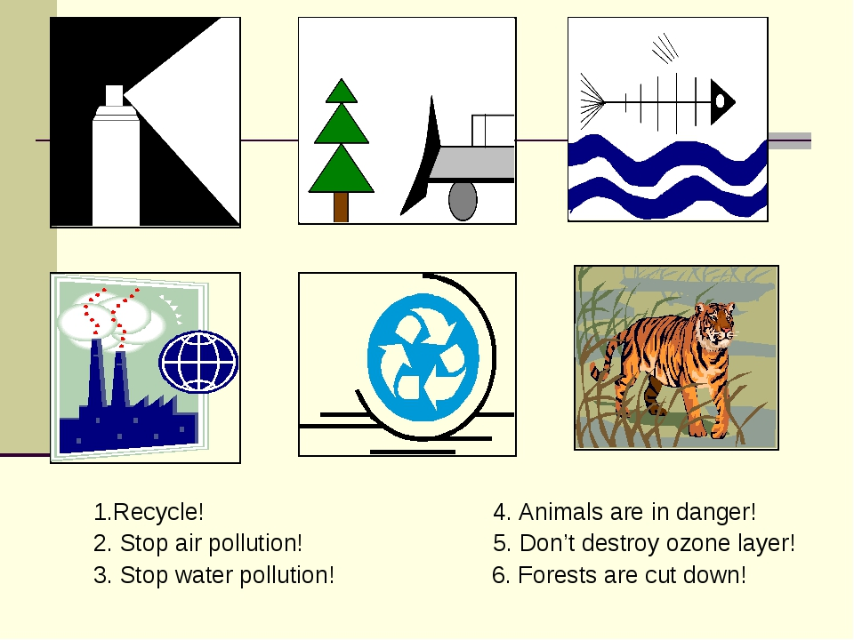 1.Recycle! 4. Animals are in danger! 2. Stop air pollution! 5. Don't destroy...