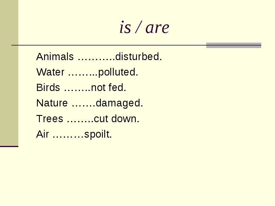 is / are Animals ………..disturbed. Water ……...polluted. Birds ……..not fed. Natu...