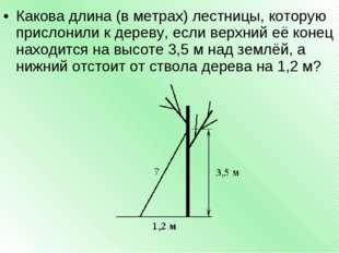 Какова длина (в метрах) лестницы, которую прислонили к дереву, если верхний е