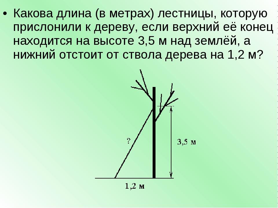 Какова длина (в метрах) лестницы, которую прислонили к дереву, если верхний е...