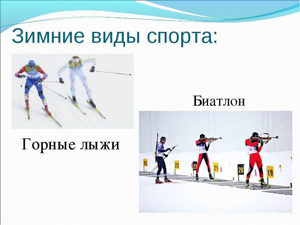 Зимние виды спорта: Горные лыжи Биатлон