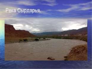 Река Сырдарья.
