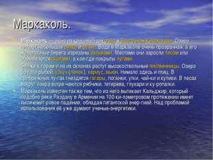 Маркаколь. Маркаколь— одно из красивейших озёр в Восточном Казахстане. Озеро