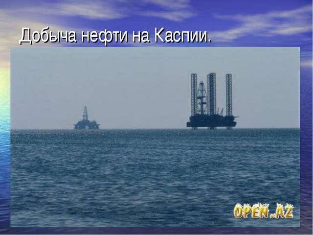 Добыча нефти на Каспии.