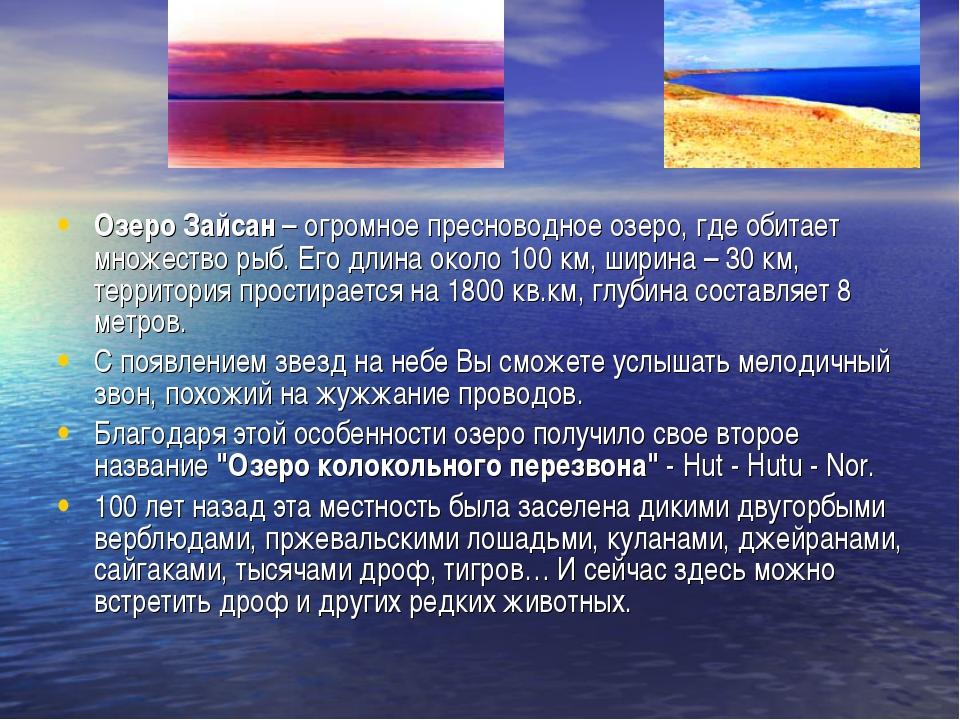Озеро Зайсан – огромное пресноводное озеро, где обитает множество рыб. Его дл...
