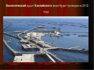 Экологический аудит Каспийского моря будет проведен в 2013 году.