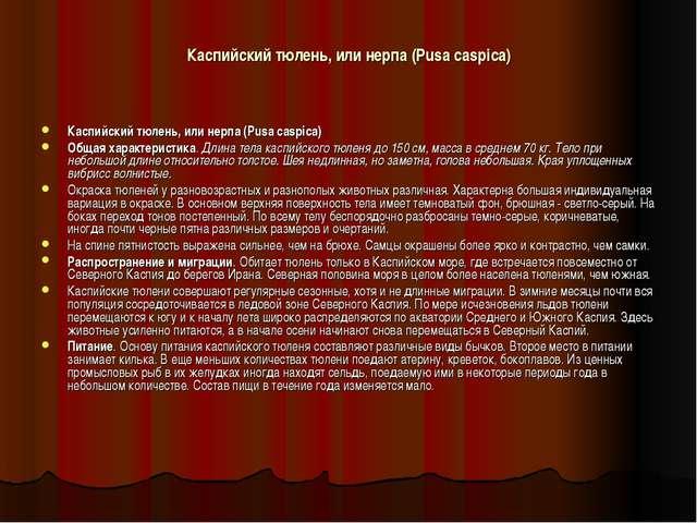 Каспийский тюлень, или нерпа (Pusa caspica) Каспийский тюлень, или нерпа (Pus...