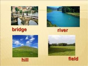 river bridge hill field