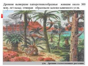 Древние вымершие папоротникообразные жившие около 300 млн. лет назад отмирая