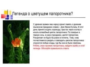 Легенда о цветущем папоротнике? С древних времен наш народ хранит память о др