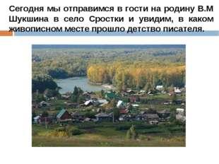 Сегодня мы отправимся в гости на родину В.М Шукшина в село Сростки и увидим,
