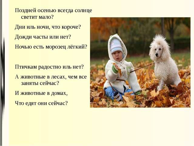 Поздней осенью всегда солнце светит мало? Дни иль ночи, что короче? Дожди час...