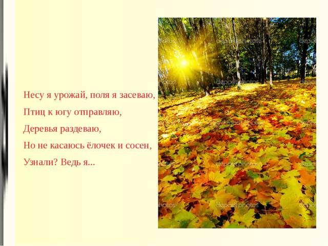 Несу я урожай, поля я засеваю, Птиц к югу отправляю, Деревья раздеваю, Но не...